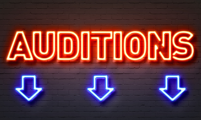 Informatie Auditie 16 september